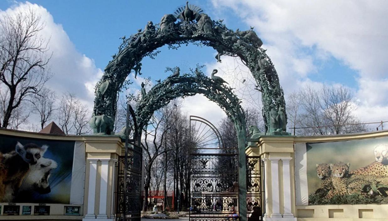 Прогулка по Московскому зоопарку. Хостелы Москвы